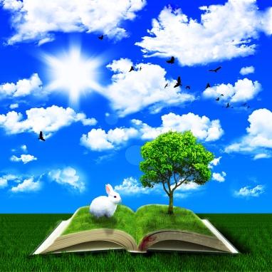 Fantasy fairy tale book